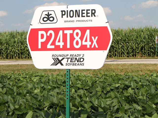 The EU approval of the Roundup Ready 2 Xtend soybean trait stack solves a critical market issue. DuPont Pioneer is one of the companies that commercialized the trait this year in hopes full import approvals would be granted. (DTN photo by Pamela Smith)