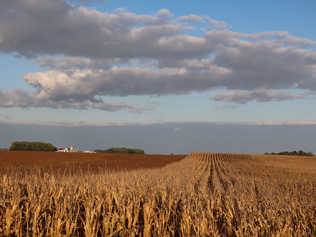 A harvest photo taken by DTN Social Media Coordinator Marie Annexstad.