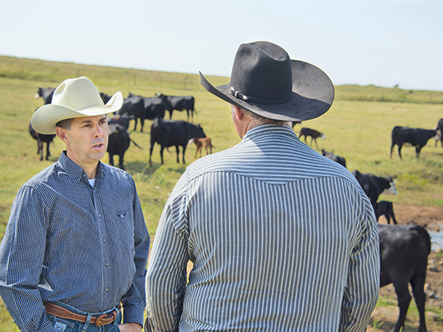David Lalman, Oklahoma State University Extension beef specialist, says a good strategy in herd development is to match the cow to the environment, and the bull to the market. (Photo courtesy OSU)