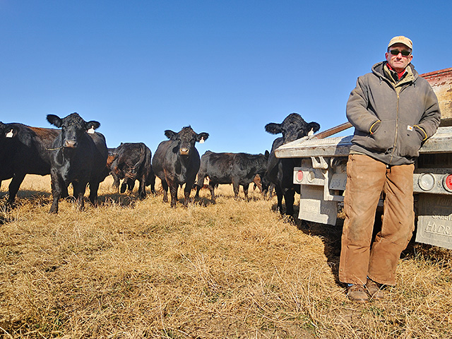 Jeff Houck says an investment in embryo transfer is helping transform this commercial beef herd. (DTN/Progressive Farmer image by Jim Patrico)