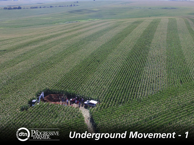 The Soil Health Partnership is one of the main organizations promoting soil-friendly practices. It dug this demonstration soil pit in Iowa as a learning tool. (Photo courtesy of Soil Health Partnership)