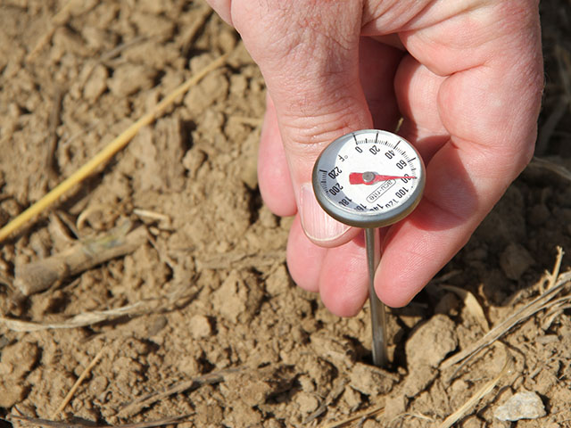 Check soil temperatures in your field, as well as the 5-day forecast, before planting corn or soybeans. (DTN photo by Pamela Smith).