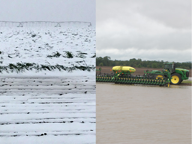 Winter wheat lies flattened under snow in the Oklahoma Panhandle, as a planter sits stalled in a flooded field in western Illinois. (Left photo courtesy Jason Becker; right DTN photo by Pamela Smith)