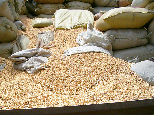 Bags of U.S. soybeans in China. On Wednesday, China proposed increasing the tariff on soybeans from 3% to 28%.