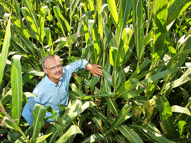 Purdue agronomist Tony Vyn says modern hybrids capture more applied nitrogen, requiring lower rates for top yields. (Progressive Farmer photo by Tom Campbell)