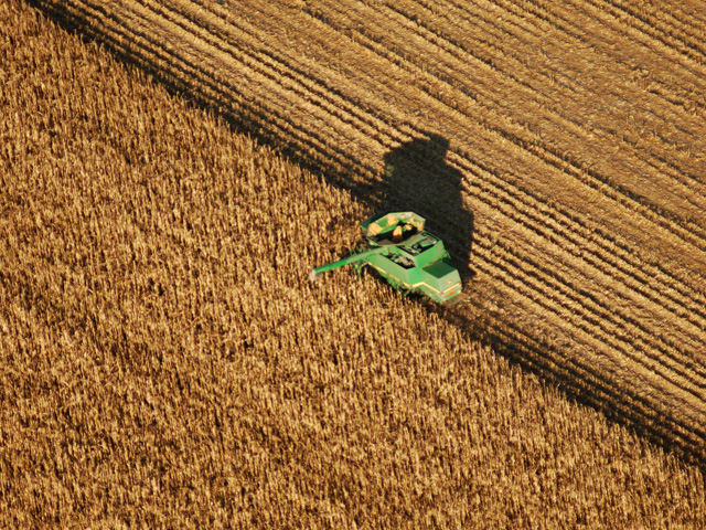 Harvesting a tax loss may generate a check from IRS: Unusually low incomes in 2015 could offset big tax years like 2010 and 2013, CPA Andy Biebl says. (DTN/The Progressive Farmer file photo)