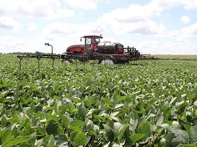 Extra nitrogen doesn't always translate to extra yield in soybeans. Consider the practice carefully. (DTN photo by Pamela Smith)