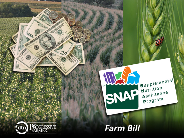 Congress is trying to get a farm bill completed at the end of the term, but lawmakers have had a hard time since last summer resolving some key issues, especially over SNAP. (DTN photo illustration)