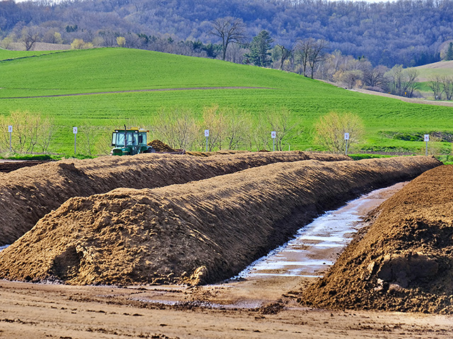 "Long windrows ""cook"" manure into compost on this 500-cow dairy. (Progressive Farmer photo by Rick Mooney)"