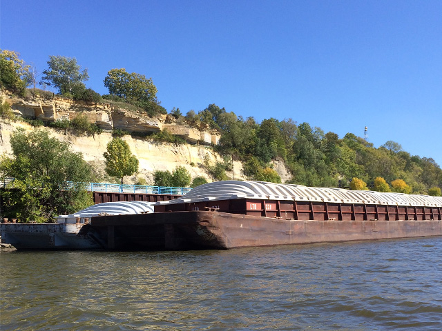 Barges wait alongside of the Mississippi River Bluffs near St. Paul, Minnesota, to be placed at river terminals and loaded with new-crop soybeans. They will then head down river to the Gulf for export, traversing many of the aging locks and dams along their journey. (DTN photo by Mary Kennedy)