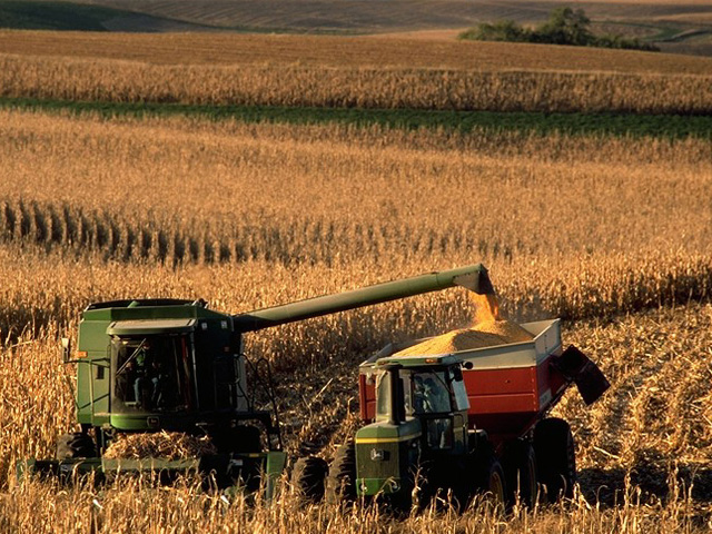 Western Midwest corn harvest, running about two weeks behind average, has a chance for better progress with a dry 10-day forecast. (DTN file photo)