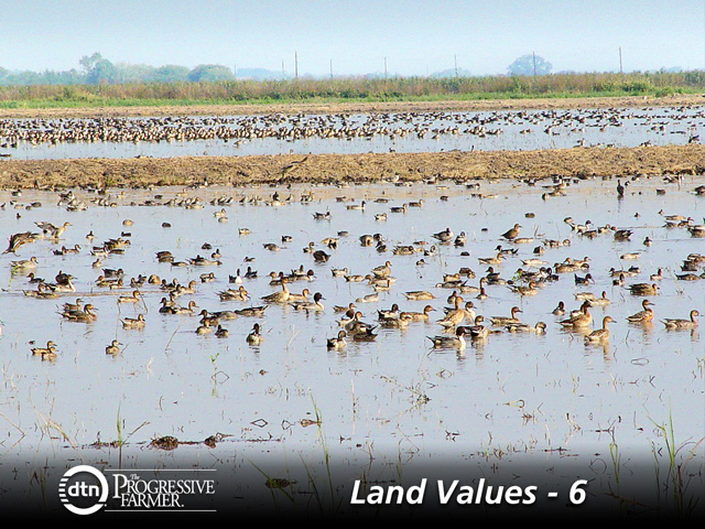 Farmers will pay more for an all-farmland tract; hunters will pay more for an all-recreational land tract. The right combination can maximize prices. (Photo courtesy of Ducks Unlimited)