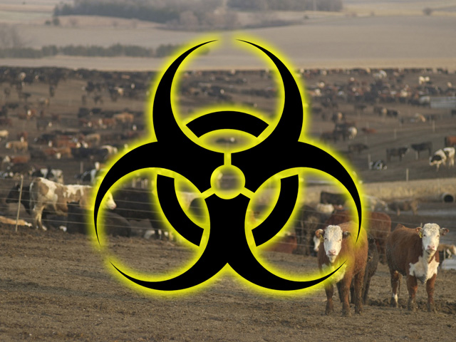Agrodefense is a broad and complex mission space, but experts say the country faces a shortage of livestock vaccines, lack of coordination among federal agencies, lack of intelligence capability, lack of funding and overall lack of awareness. (DTN photo illustration by Nick Scalise)