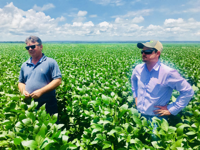 An informal survey of farmers in Mato Grosso indicates farmers expect strong yields again in the 2017-18 soybean crop. Amarildo Crystofoli (left) and his agronomist, Vitor Sanches, are happy with the soybean crop condition at his farm and believe that the yield will equate to 53.5 bushels per acre. (DTN photo by Lin Tan)