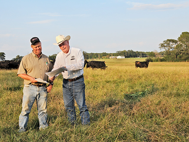Cattleman Scotty Lovett (left) and Ashby Green, regional representative, Neogen GeneSeek, sampled 59 heifers from the herd to see which would be the best replacements. (Progressive Farmer photo by Becky Mills)