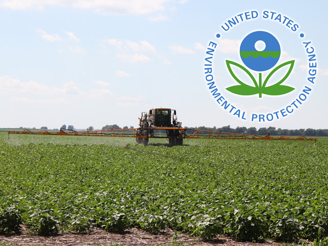 Some state officials may not keep the EPA updated on dicamba injury this summer, given that their past reporting did not yield any solutions to the problems this chemical has caused state regulatory agencies for two to three years. (DTN file photo)