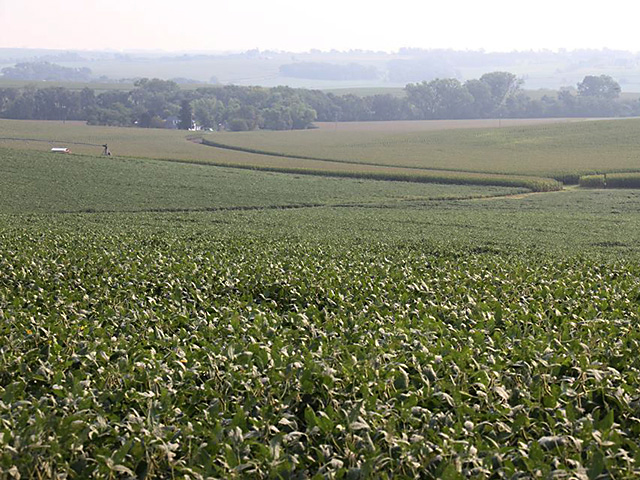 Average values of Nebraska farmland has been declining for four years, according to a new University of Nebraska-Lincoln survey. (DTN file photo by Elaine Shein)