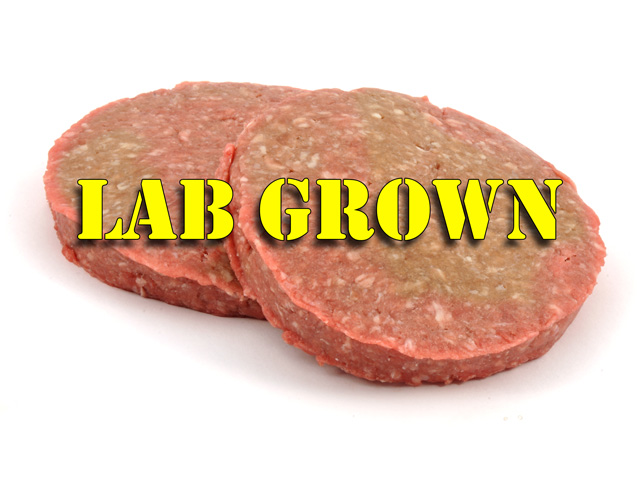 "Major meat suppliers are investing more money in start-up companies growing protein in labs. But livestock groups and others are challenging whether these lab-grown proteins should be called ""meat"" or ""beef."" (DTN photo illustration by Nick Scalise"