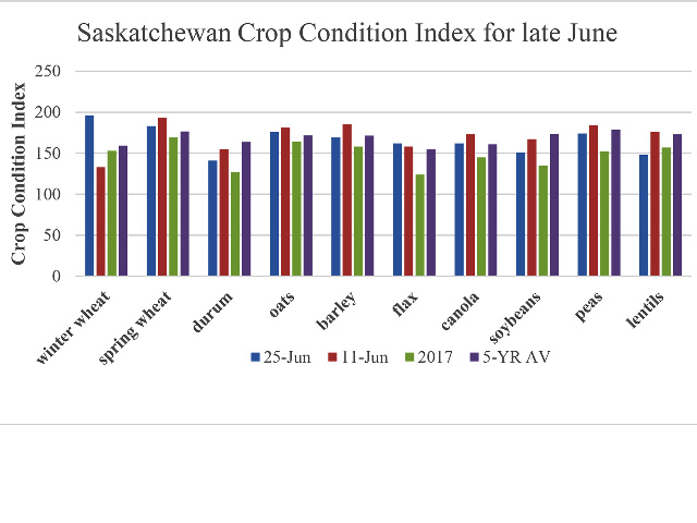 This is a look at the Crop Condition Index for selected Saskatchewan crops as of June 25 (blue bars), June 11 (red bars), June 26 2017 (green bars) and the five-year average for this week (purple bars). While winter cereals have shown a marked improvement over the past two weeks, most other crops have shown a slight decline while most indices remain higher than this time last year. (DTN graphic by Cliff Jamieson)