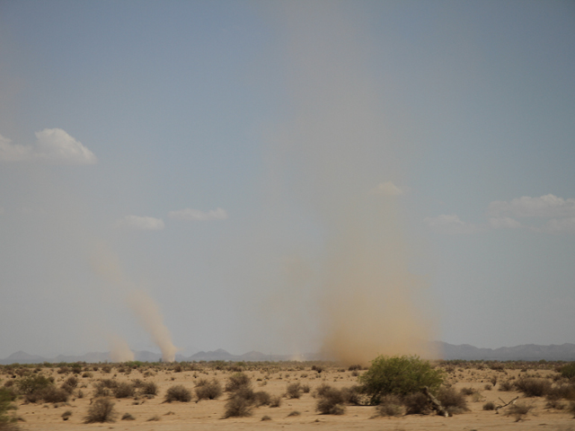Multiple dust devils spin through the desert not far from Phoenix on Aug. 4, as temperatures climbed higher than 110 degrees Fahrenheit. (DTN photo by Elaine Shein)
