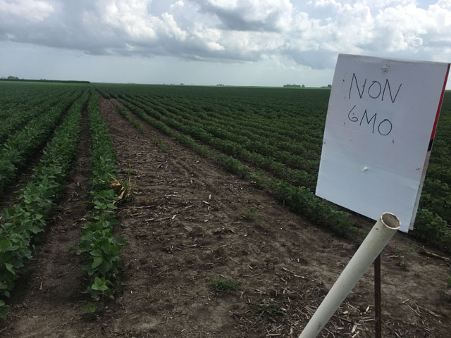 The issue of dicamba has become a sensitive topic with many voices adding to the discussion. (DTN photo by Pamela Smith)
