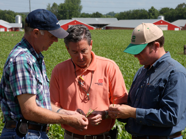 Certified crop advisers are agronomists who have been certified to have a certain levels of agronomic knowledge. (DTN/The Progressive Farmer file photo)