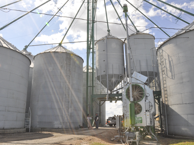 Storing grain on the farm can be financially beneficial, but requires safety precautions. (DTN file photo by Katie Micik)