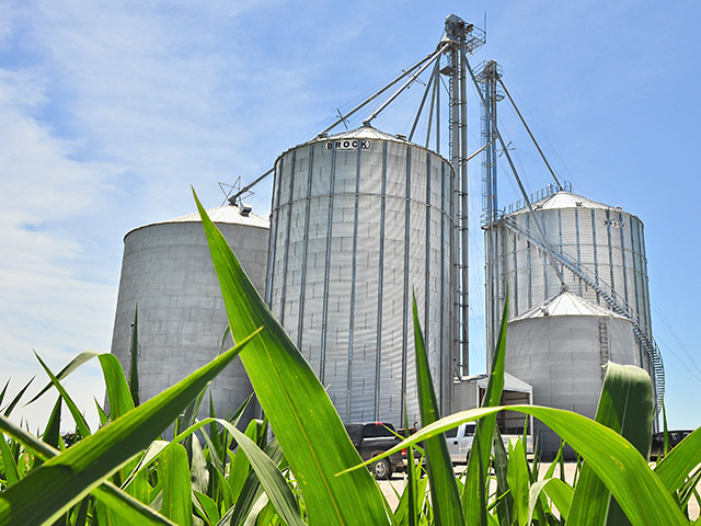 The most important aspect of grain storage is to keep it clean. (Progressive Farmer photo by Katie Dehlinger)