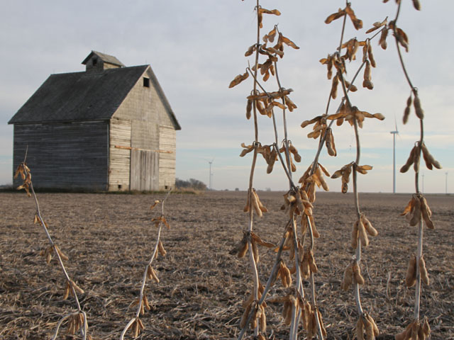 The U.S. soybean harvest is off to a good start, at 14 percent complete compared with 8 percent for the five-year average. (DTN photo by Pam Smith)
