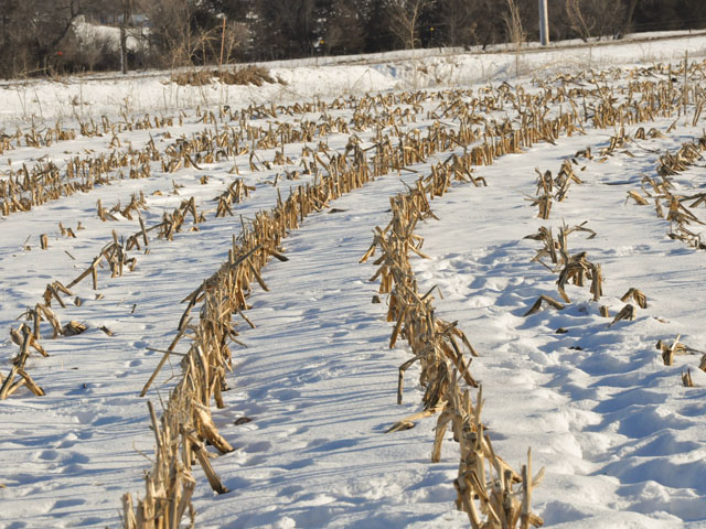 Winter is upon us, but some farmers have a few fields left to harvest before they can tackle the paperwork and farm upkeep that come in the winter months. (DTN photo by Russ Quinn)