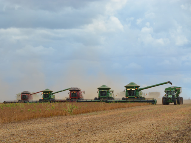 Between 1900 and 2000, world population quadrupled but global grain production rose by five times and global industrial output by 40 times. This line of combines, harvesting a crop in Mato Grosso in Brazil, is an example of how much ag technology has changed. (DTN file photo by Chris Clayton)