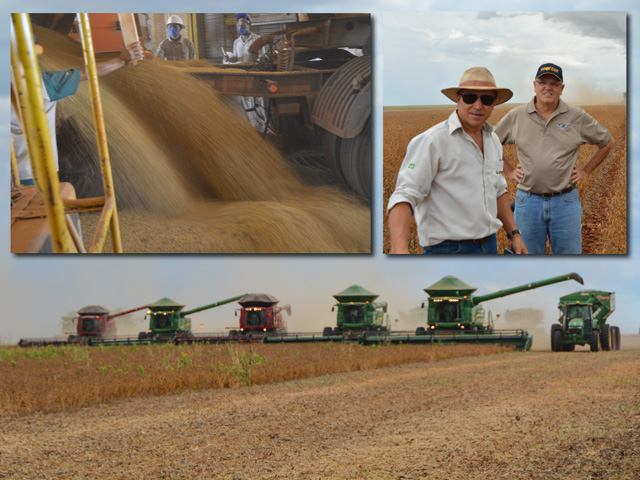 Top left: A worker dumps a freshly harvested load of soybeans for drying and storage at Grupo Morena, a farm near Parecis, Mato Grosso, Brazil. Top right: Romeu Morena (left), CEO and founder of Grupo Morena, and Ricardo Silva, another area farmer and local guide, check out soybean pods on Morena's farm near Parecis in Mato Grosso, Brazil. Bottom: A line of combines, both John Deere and Case-IH, roll across a 400-hectare field, (988 acres) this week, racing to beat an afternoon rain shower at the farm of Grupo Morena near Parecis, Mato Grosso. (DTN photos by Chris Clayton)