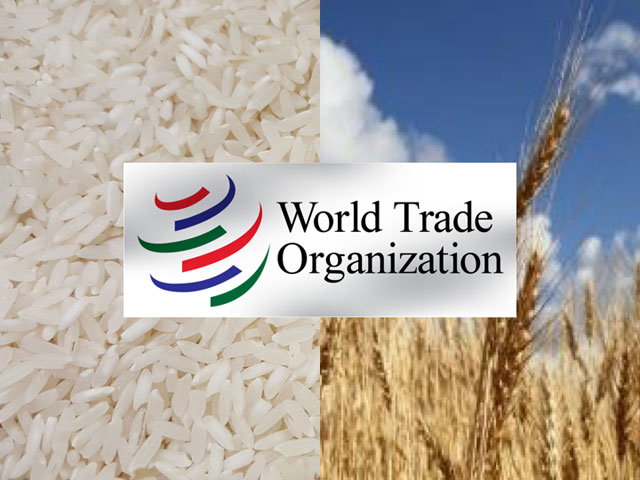 U.S. wheat farmers, along with rice producers, won a World Trade Organization ruling Thursday against China. It was a major victory in the WTO, but the Trump administration has been blocking the appointment of WTO appellate judges, which could gridlock the system, and this case, unless the case is resolved in trade talks. (Logo courtesy of the WTO)