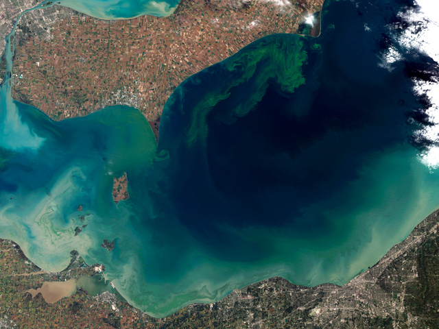 An environmental legal group's lawsuit is attempting to force the EPA to put western Lake Erie on a pollution diet, following years of algae blooms. (Photo by Jesse Allen and Robert Simmon; courtesy of Wikicommons)