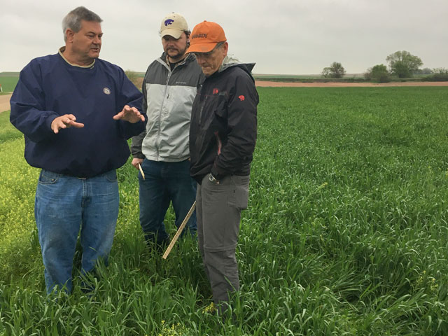 Wheat Quality Council executive vice president Dave Green educates two crop scouts, one a state bureaucrat, the other a lawyer -- on wheat production on this year's Hard Red Winter wheat tour. (DTN photo by Emily Unglesbee)