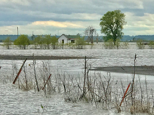 This flooded field in southwest Iowa will go unplanted this year. USDA answered some questions on prevented planting decisions and disaster aid, but indicated the dollars likely won't go far enough to boost prevented planting payments. (DTN file photo)