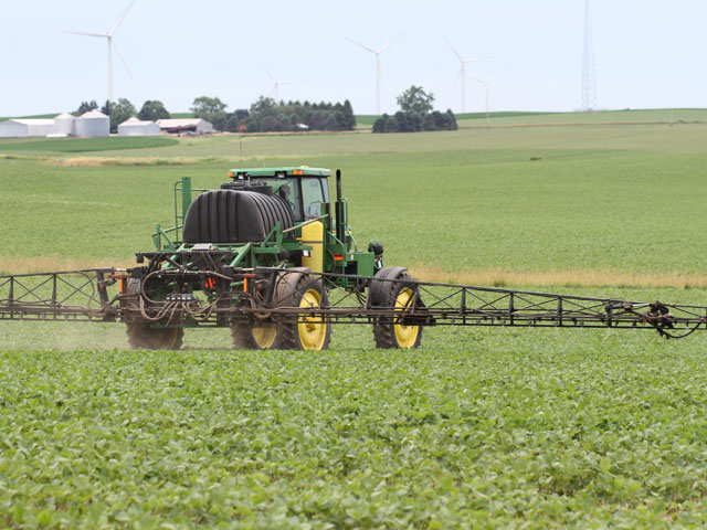 Illinois farmers who planted their soybeans after June 1 will have now have until July 15 to spray them with dicamba. (DTN photo by Pamela Smith)