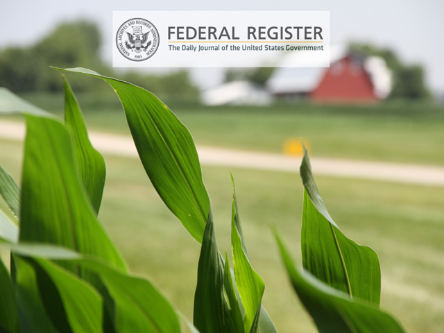 A proposed new rule on how USDA will regulate genetically-modified (GM) crop traits in the future was a little too obscure for many to take notice. But its impact on agriculture could far outstrip the flashier executive order on biotechnology regulation announced this week. (DTN file photo by Pam Smith, DTN graphic)