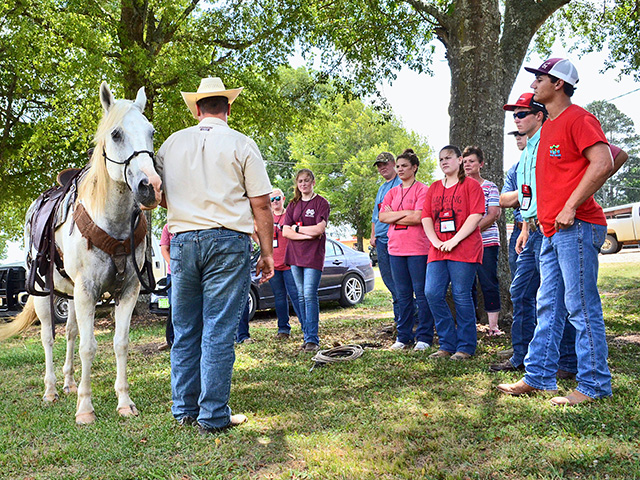 MSU's Corey White shares basic horsemanship skills and tips on choosing and caring for tack, Image by Victoria G. Myers