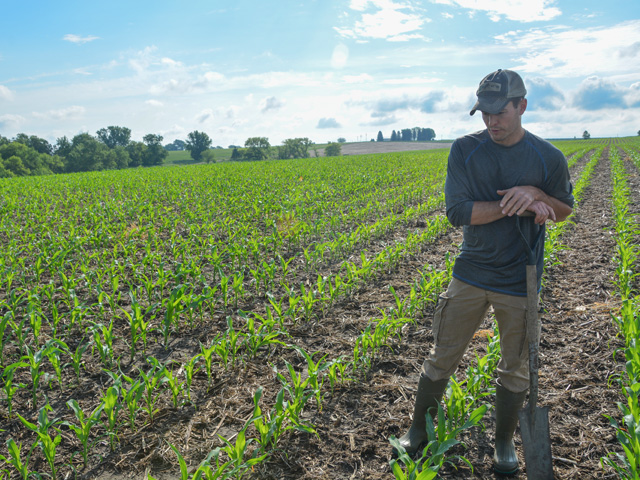 Nathan Anderson, 31, examines his corn crop on Bobolink Prairie Farms near Cherokee, Iowa. Anderson said he feels fortunate to get his corn crop planted this spring. He and other producers who got their crops in are now watching the price rally. (DTN photo by Chris Clayton)