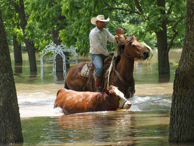 Cowboy Cory Conley rides in to help rescue stranded cattle after recent floods hit Catoosa, Oklahoma. (Photo courtesy of Cory Conley)