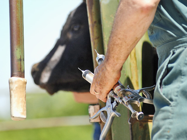 Always read the label, and if things still aren't clear, call the manufacturer or your herd veterinarian. (Progressive Farmer image by Jim Patrico)