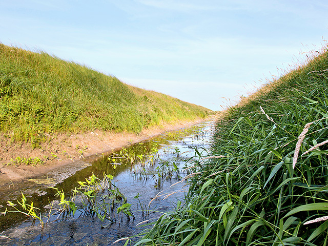 Two senators introduced a bill to codify EPA's changes to the waters of the United States, or WOTUS, rule. (DTN/Progressive Farmer photo by David L. Hansen)