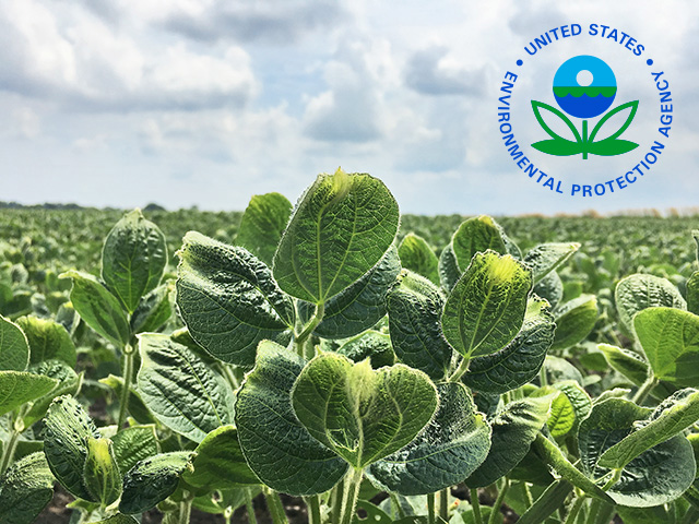 EPA announced this year that it may limit states' ability to restrict pesticides beyond their federal labels. Last week, Illinois announced new restrictions on dicamba anyway. (DTN photo by Pamela Smith)