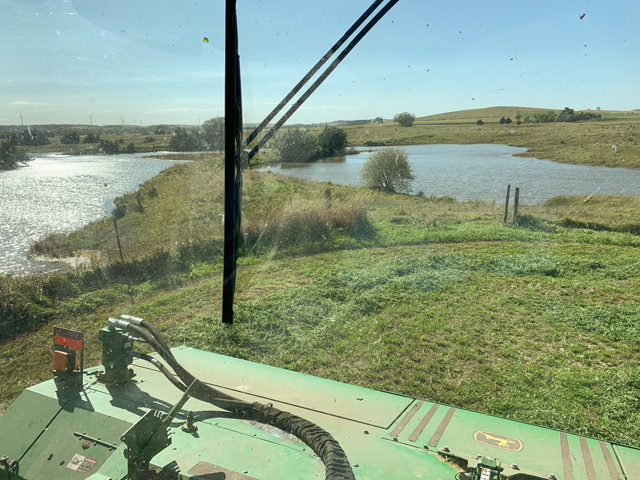 Several years of above-normal precipitation have had a negative effect on forages being raised in the Nebraska Sandhills region. Many ranchers now face the tough decision of either culling cow numbers to lessen feed costs or buying hay and other feeds. (Photo courtesy of Casey Cooksley)