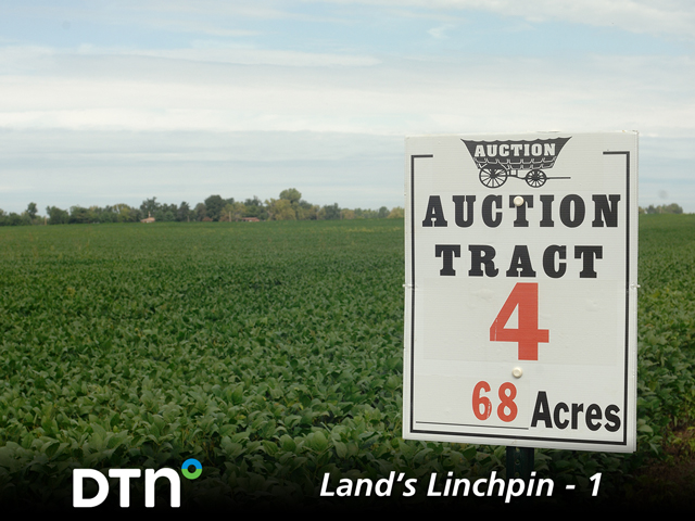 Even though farm profits are tight, farmland prices are steady to slightly higher, with a few sales carrying eye-popping price tags. (DTN File Photo)