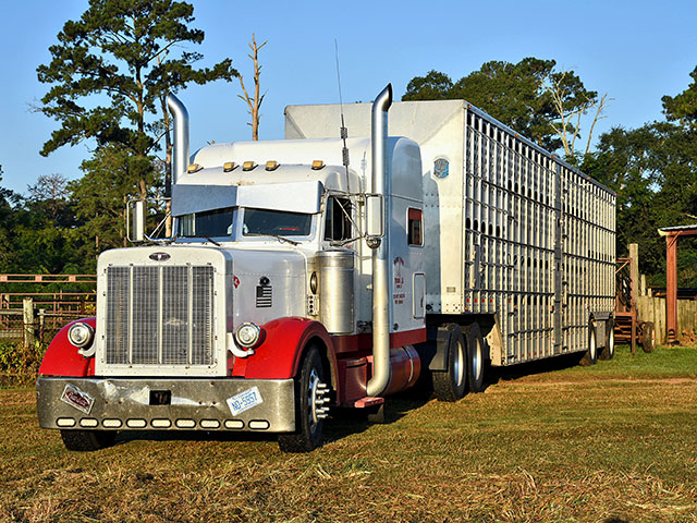 There's still time for cattle transporters to get certification before the end of the year. (DTN/Progressive Farmer photo by Becky Mills)