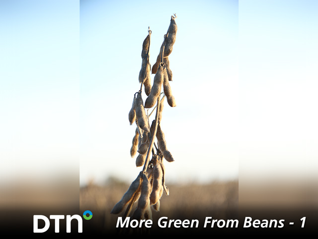 Research identifies ways for soybean growers to add bushels to every field. (DTN photo by Pamela Smith)