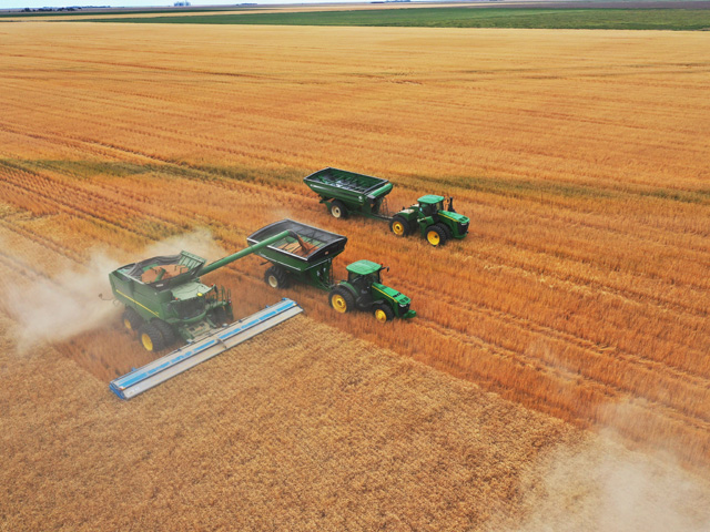 Wheat harvest on a western Kansas farm, where growers are pushing the limits of wheat productivity. Three wheat growers breached the 200-bushel barrier in the National Wheat Yield Contest this year. (DTN photo by Joel Reichenberger)