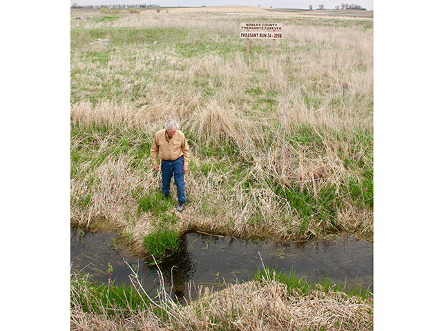 Les Johnson walks among native grasses next to a burn conducted to regenerate grasses. (Progressive Farmer image by Des Keller)